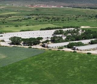 Fotografía aérea de las granjas de cerdos